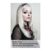Straight_Long_Grey_Wig_Wonderland_Wig_UK